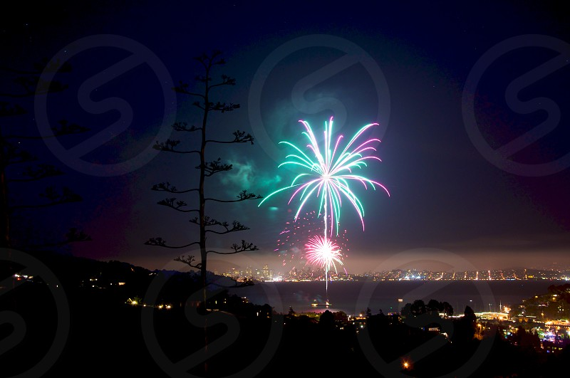 Fireworks from a hilltop with San Francisco in the distance.  photo