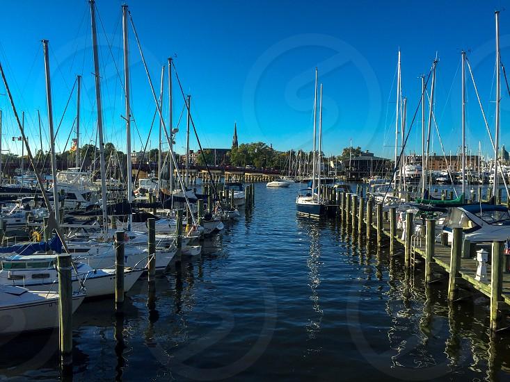 Annapolis MD Maryland seal water ship sail harbor photo