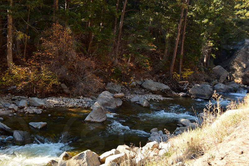Stream in Rocky Mountain National Park photo