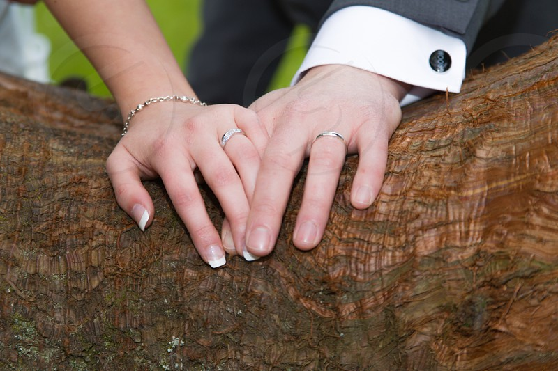 man and woman's hand photo