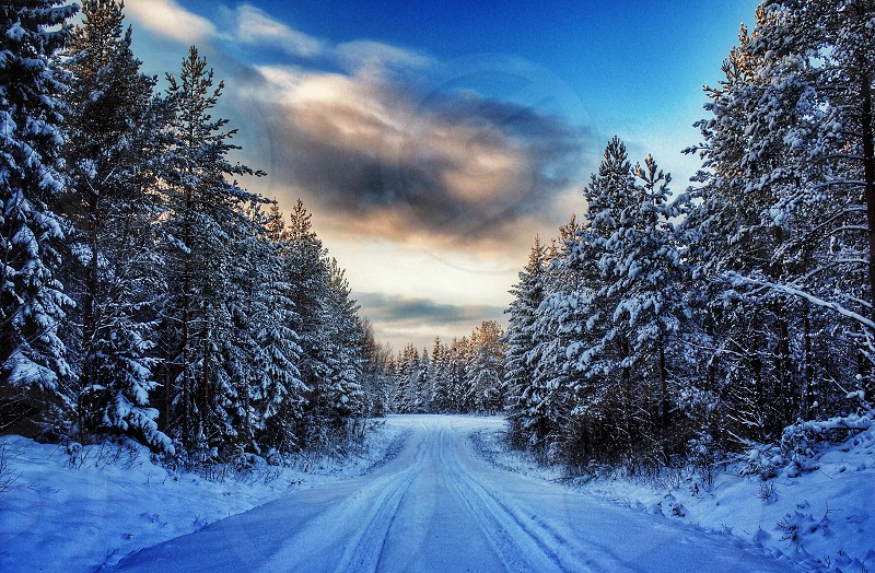 Snow winter road cold Sweden photo