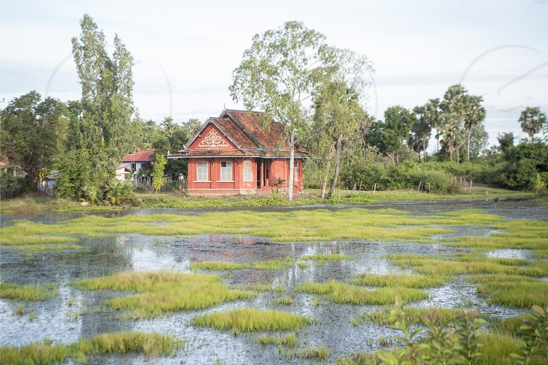 a house in the Landscape near the city centre of Kampong Thom of Cambodia.  Cambodia Kampong Thom November 2017 photo