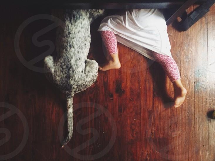child lying on floor beside white and black dog photo