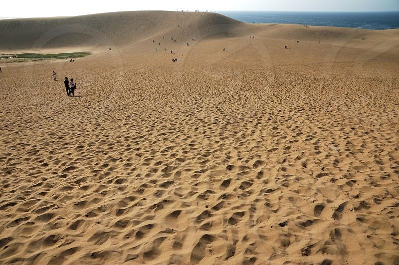 鳥取砂丘 Tottori Sand Dunes photo