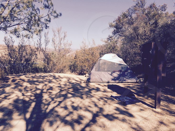 grey and white camping tent on mountain hill beside trees at daytime photo