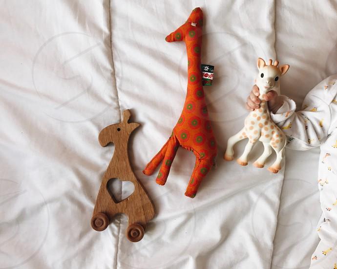 Giraffes giraffe toy kids toy child children baby hand play fun entertain infant playful wooden toy Sophie la giraffe  photo