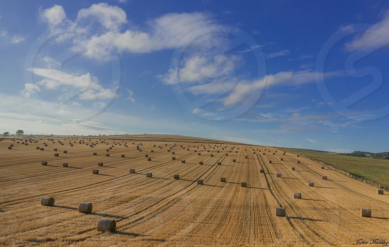 Field hay haybale summer farming farm crop shadows hill England countryside photo