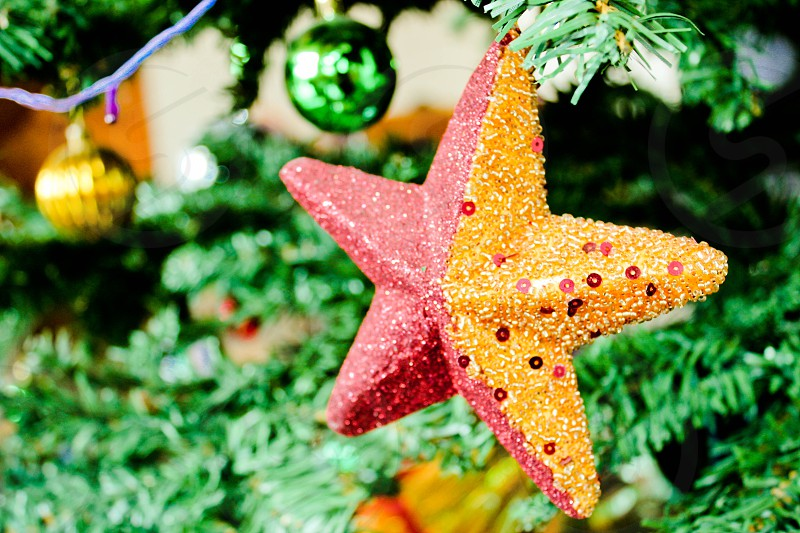 star ornament red gold Christmas tree green ball bauble string of lights lights bright photo