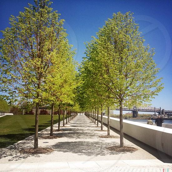 concrete pathway  photo