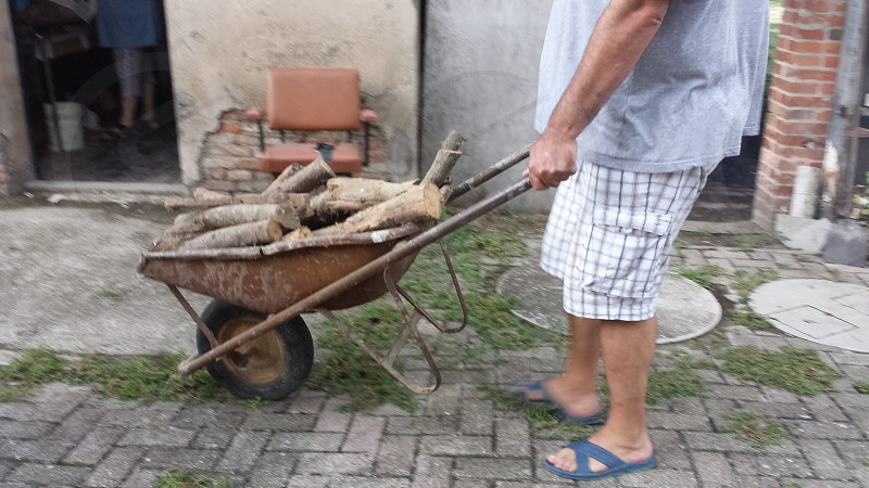 man wearing gray t-shirt and white checkered cargo shorts pushing brown wheelbarrow filled with brown firewood photo