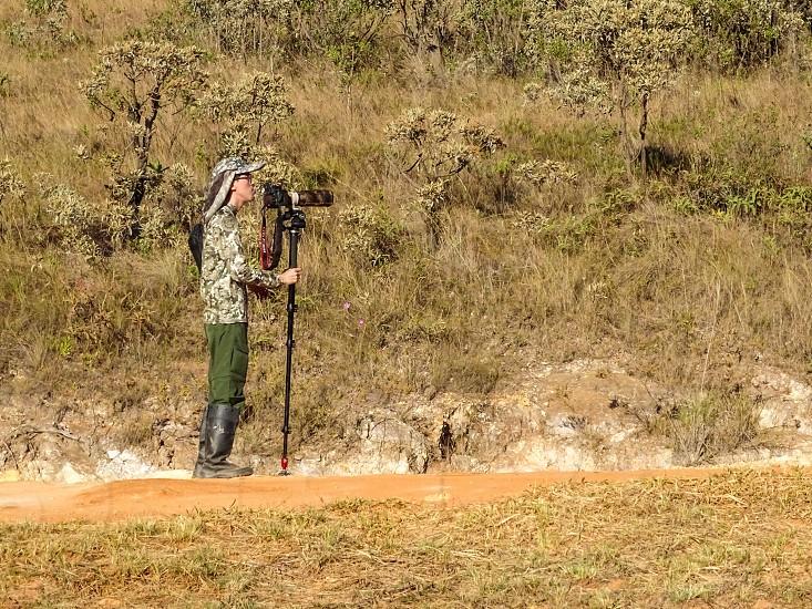 Birdwatching Serra da Canastra MG Brazil photo