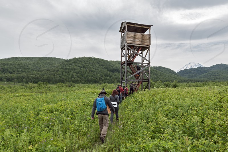NALYCHEVO KAMCHATKA PENINSULA RUSSIA - JULY 12 2014: Group of tourists and travelers go to observation tower of brown bears and wildlife in the Central cordon of nature park Nalychevo. Russian Federation Far East Kamchatka Peninsula. photo