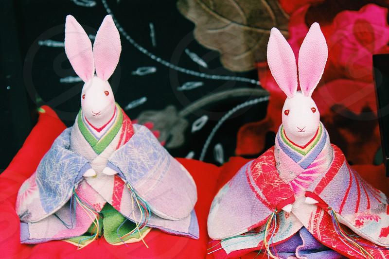 Happy bunny bunny  photo