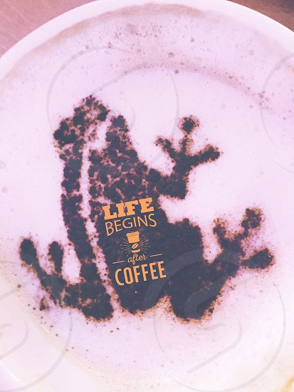 frog designed coffee frape with life begins after coffee text greetings photo