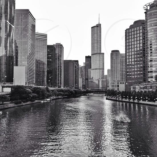 Chicago river skyscraper skyline urban photo