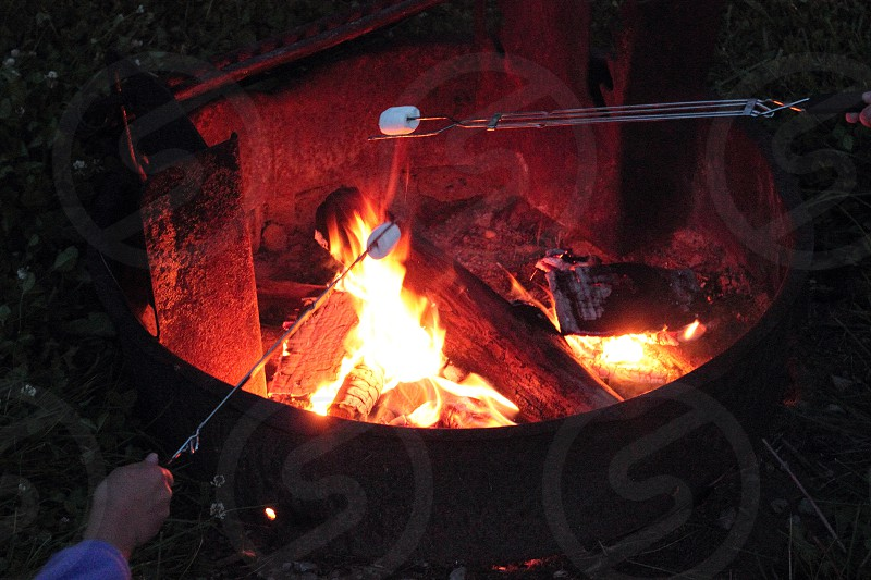 Roasting camping hot fire marshmallows nighttime outdoors outside camp wood burning  photo