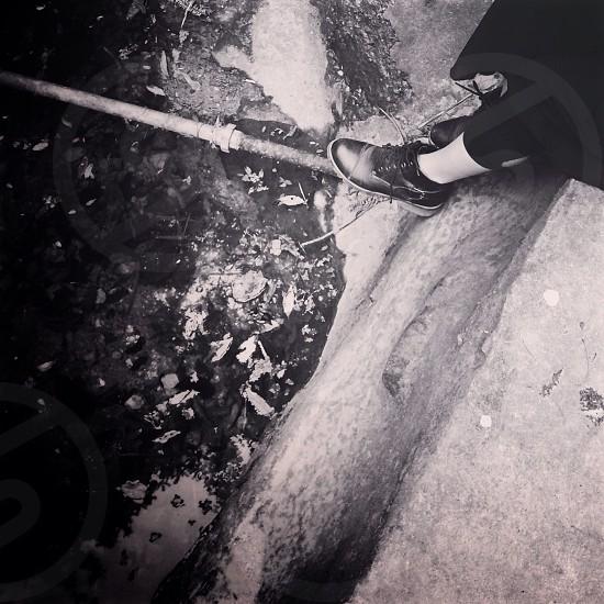 black shoe photo