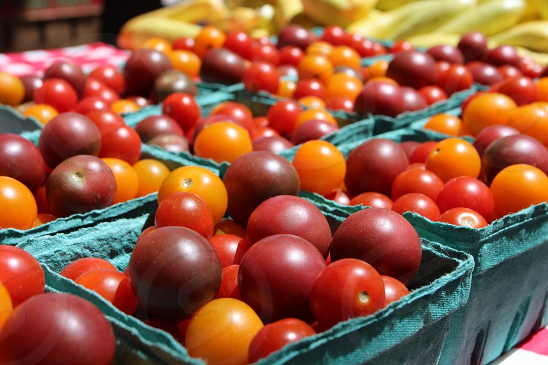 Cartons of multicolored cherry tomatoes at farmers market photo
