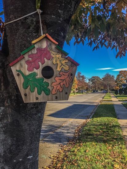 Bird house in the Fall season photo