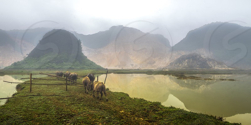 lake mountain vietnam fog landscape photo