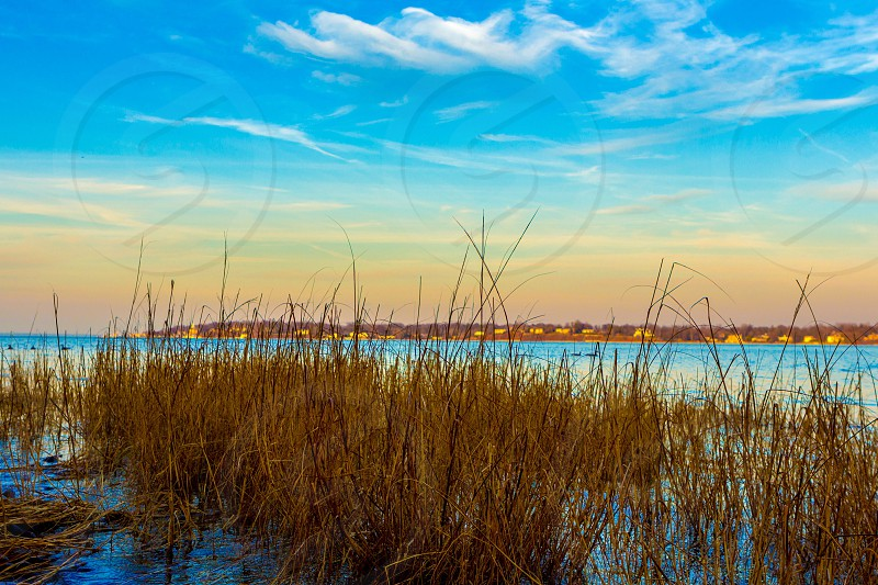 brown grass on body of water during sunset photo