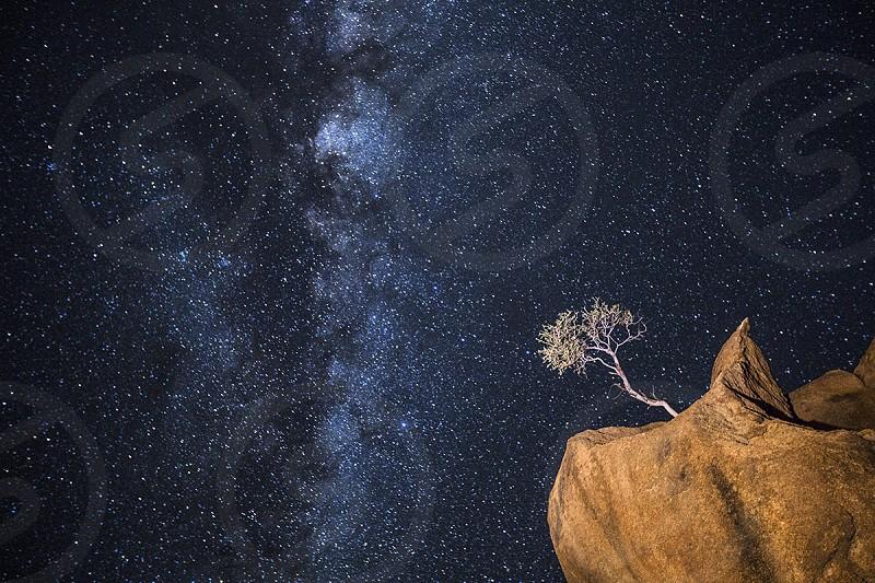 Milky Way stars Astrophotography Botswana Tree Baobab light painting night midnight blue Africa constellation evening night arid Namibia Spitzkoppe Boulder granite impossible photo