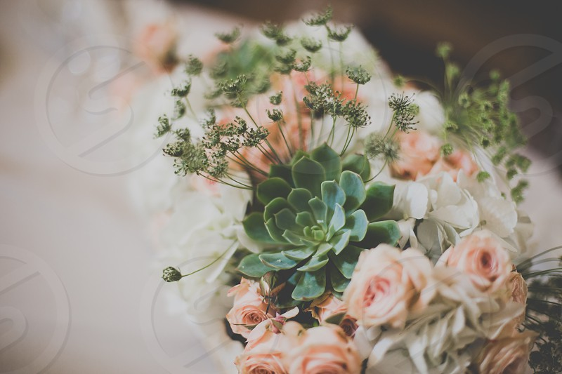 wedding flowers centerpiece soft decorations photo