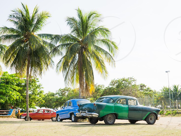 cuba classic car american tropical car ford old island  photo
