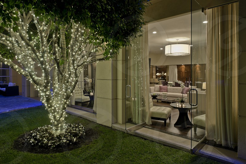 Exterior interior hotel evening lights room tree design. photo