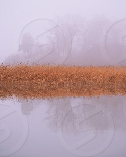 Symmetry symmetric nature fog foggy mist misty fall autumn water reflection photo