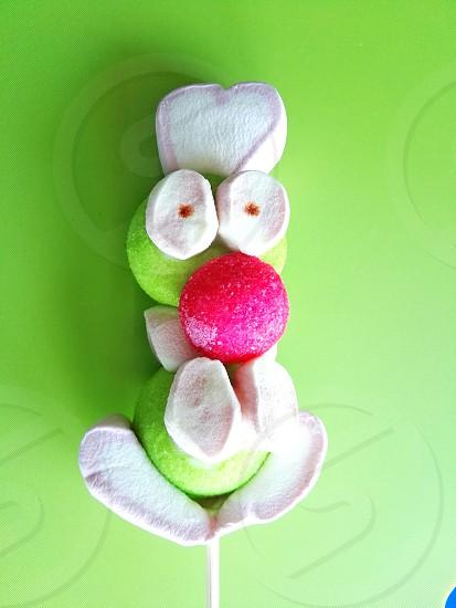 green and white marshmallow on stick photo
