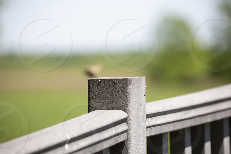 Railing in nature with blurred sky and vegetation in the background  photo