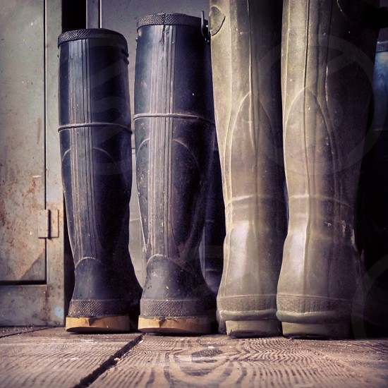 black rubber rain boots photo
