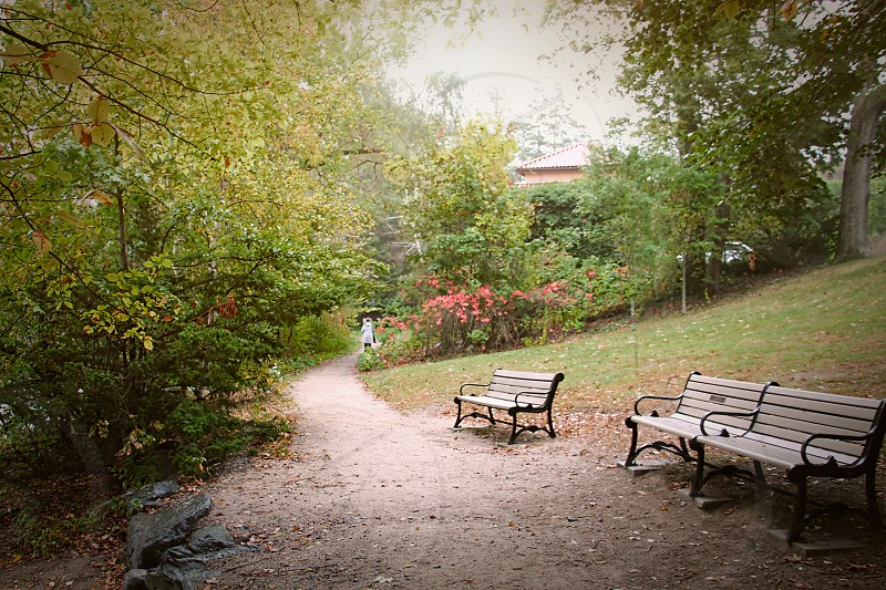 Two wooden park benches are near a path in a leaft autumn park photo