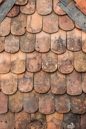 Texture of an old weathered roof tiles.  photo