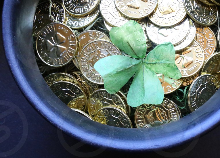 Four Leaf Clover in a Pot of Gold Coins photo