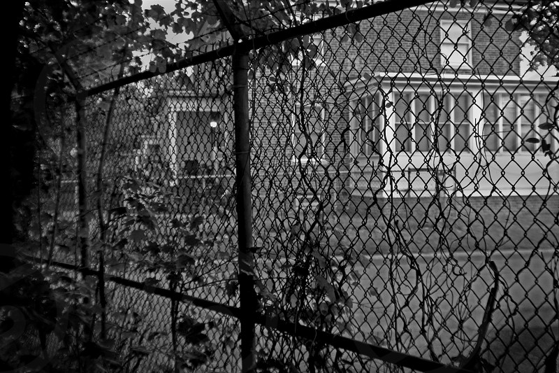 Fenced in or fenced out photo