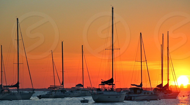 white motorboats on sea during sunset photo