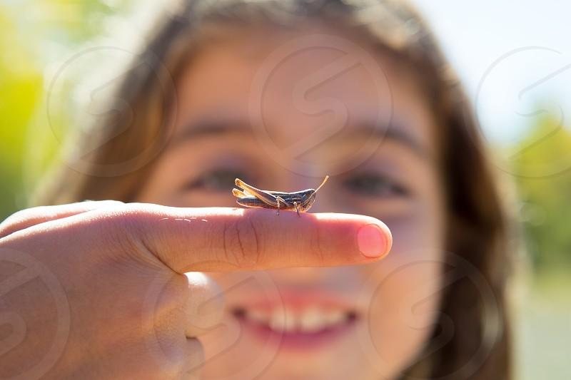 kid hand holding grasshopper bug macro detail photo