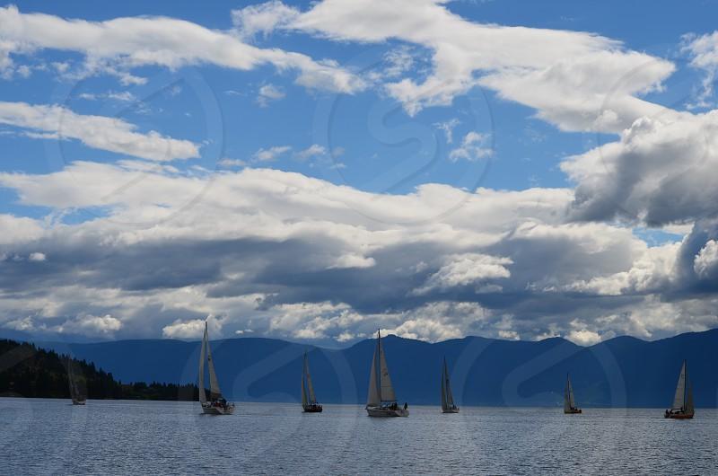 Sailboats Flathead Lake Montana photo
