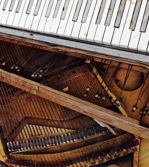 Old piano parts. Piano strings. photo