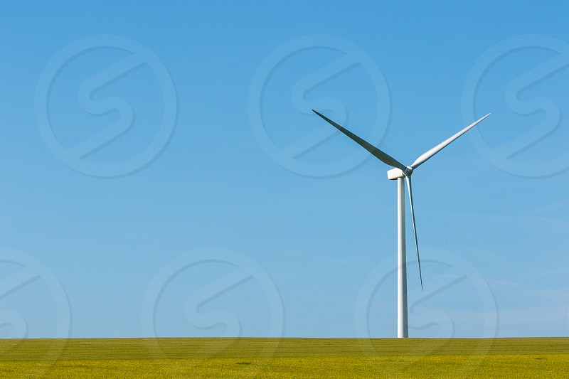 Lots of negative space to give a minimalist look to my photo featuring only a green field (or rape field) a windmill on a sunny day. photo
