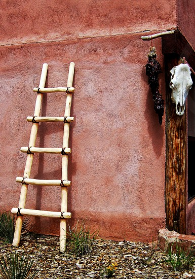 Coral colored New Mexico adobe home with wooden ladder chili peppers and cow skull. photo