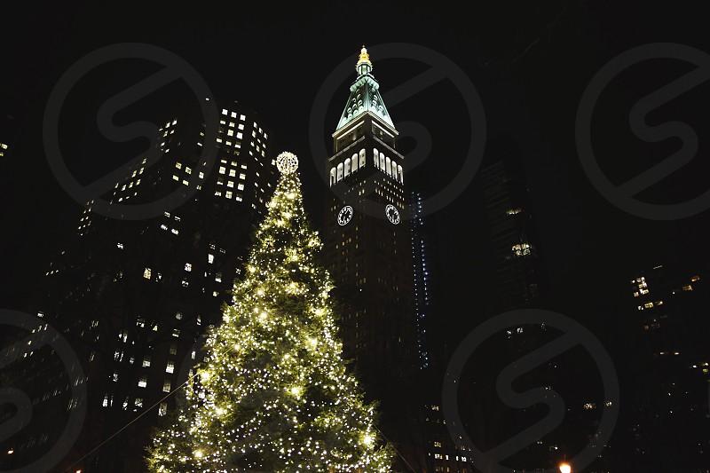 New York Christmas tree night winter photo