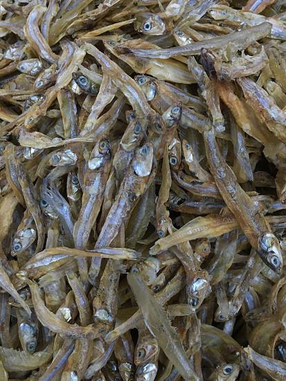 Driedfishdried fishseafoodproducemarine life photo