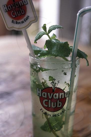 a mijito in the Bar La Bodeguita del medio in the city of Havana on Cuba in the caribbean sea. photo