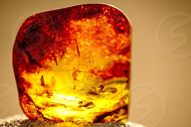 Amber in sun with inclusions  photo