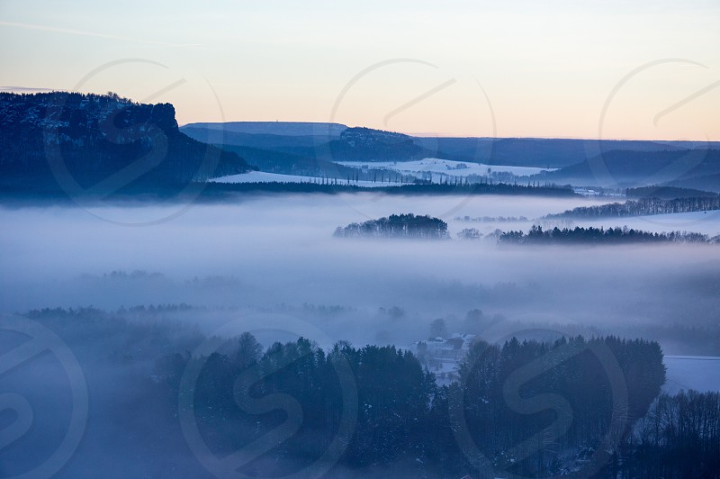 misty forest aerial view during sunset photo