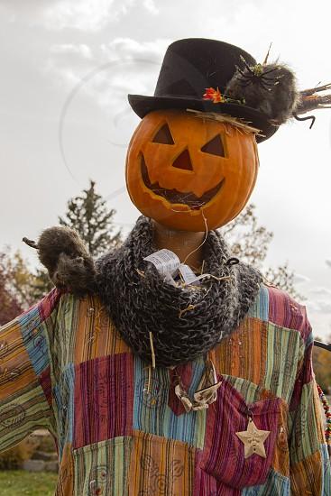 Pumpkin headed scare crow in Denver Colorado photo