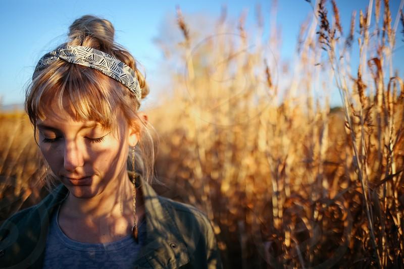 harmony peace content cornfield sunshine warm light photo